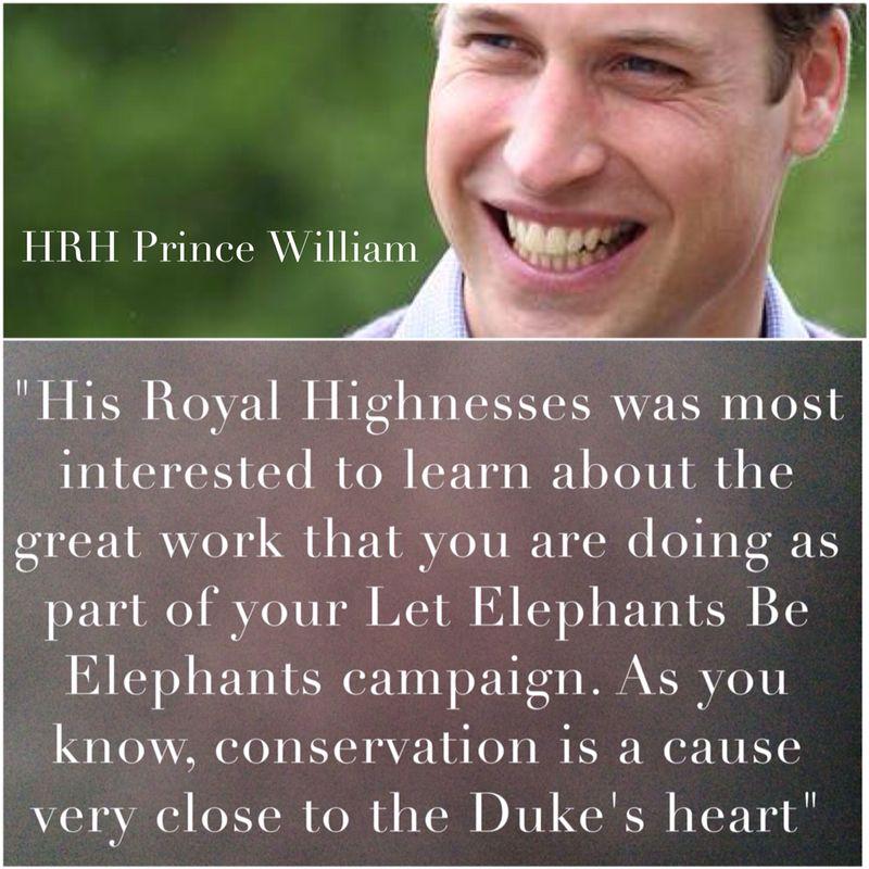 William text