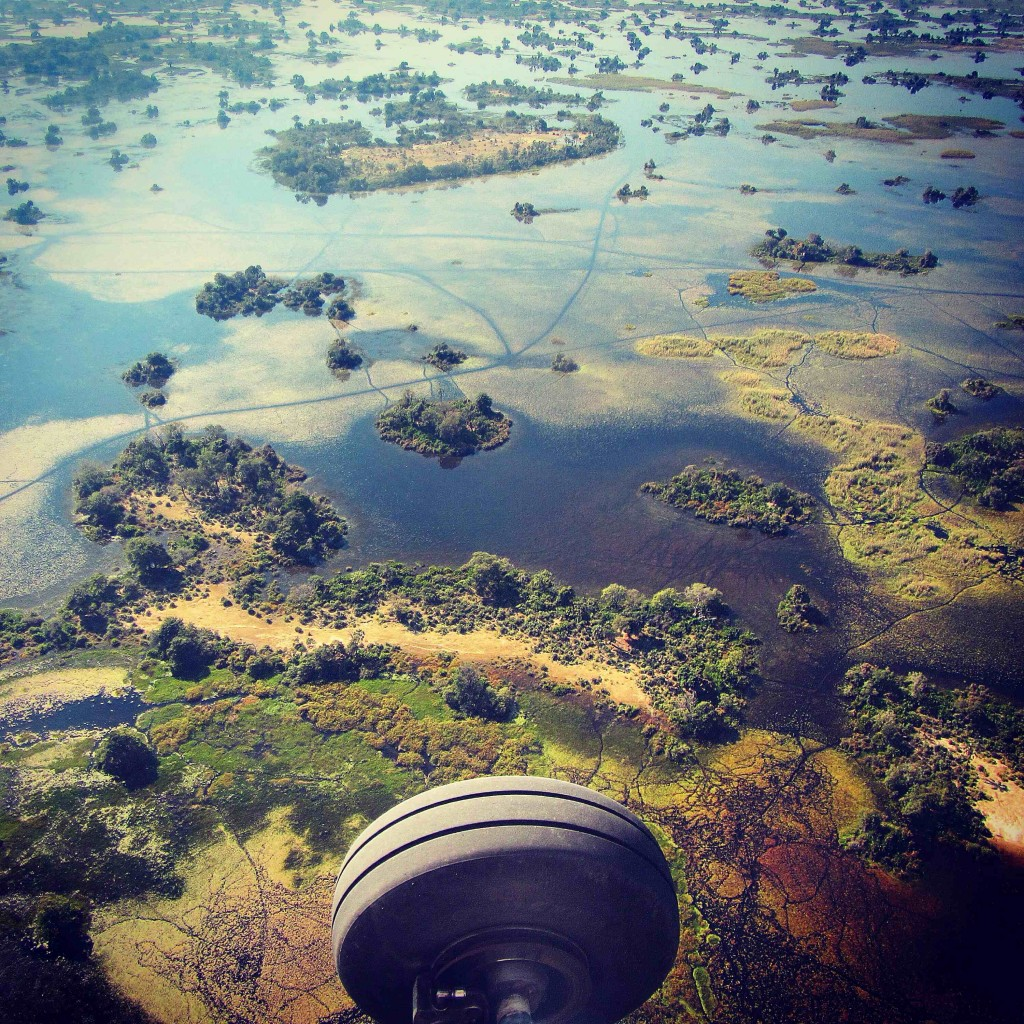 Okavango from air lowres