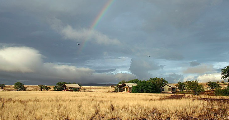 Desert Rhino Camp, Namibia