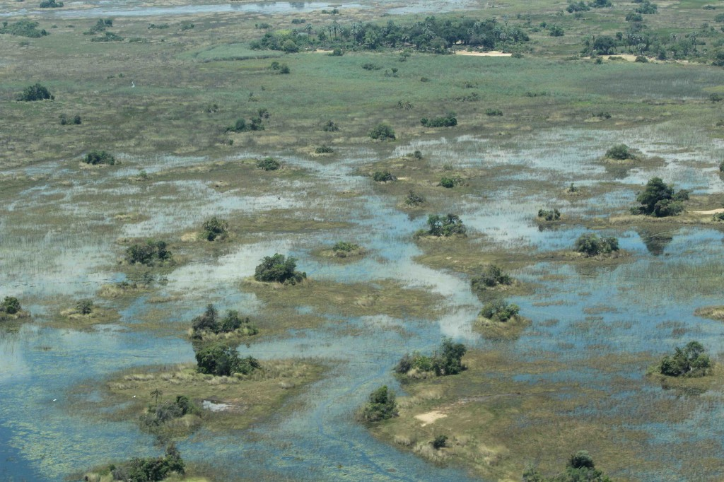 Can you spot the safari camp in this photo taken from the air?