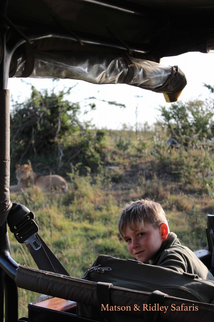 10 Year Old Allessandro watches a lioness