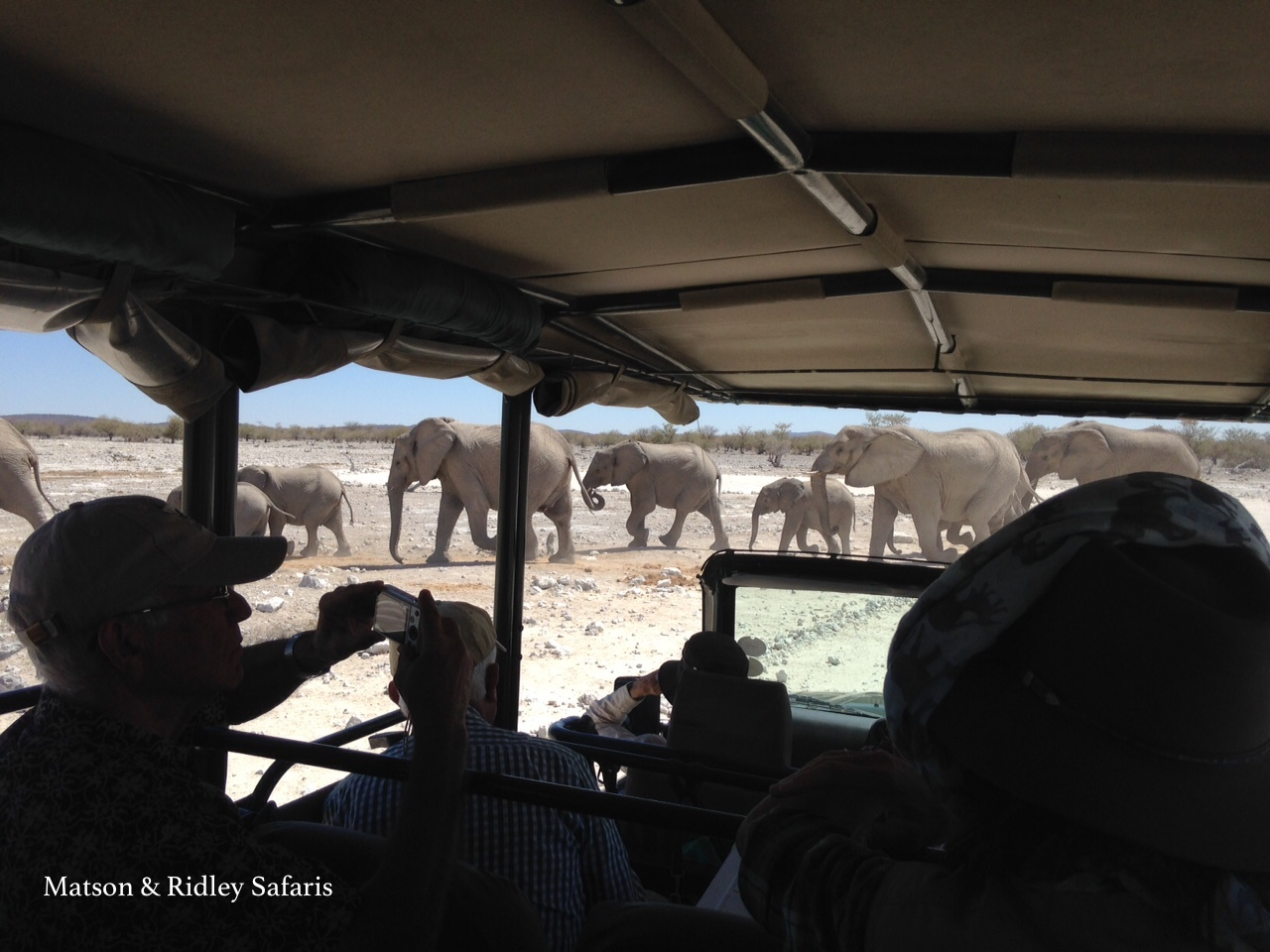 A magical moment - surrounded by elephants at Ombika waterhole, Etosha National Park