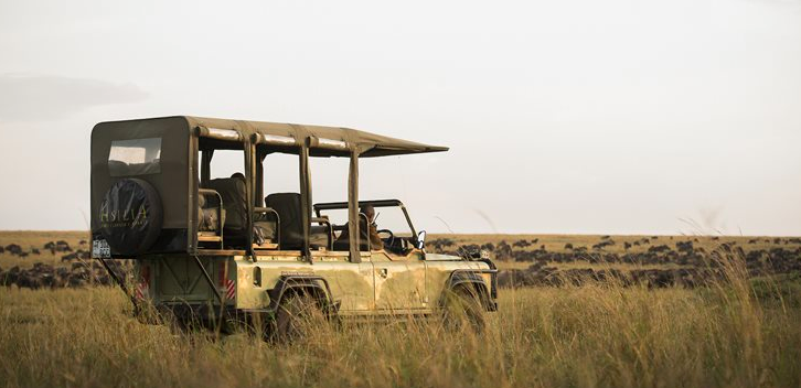 Kimondo Camp game drive, Serengeti. Photo: Asilia