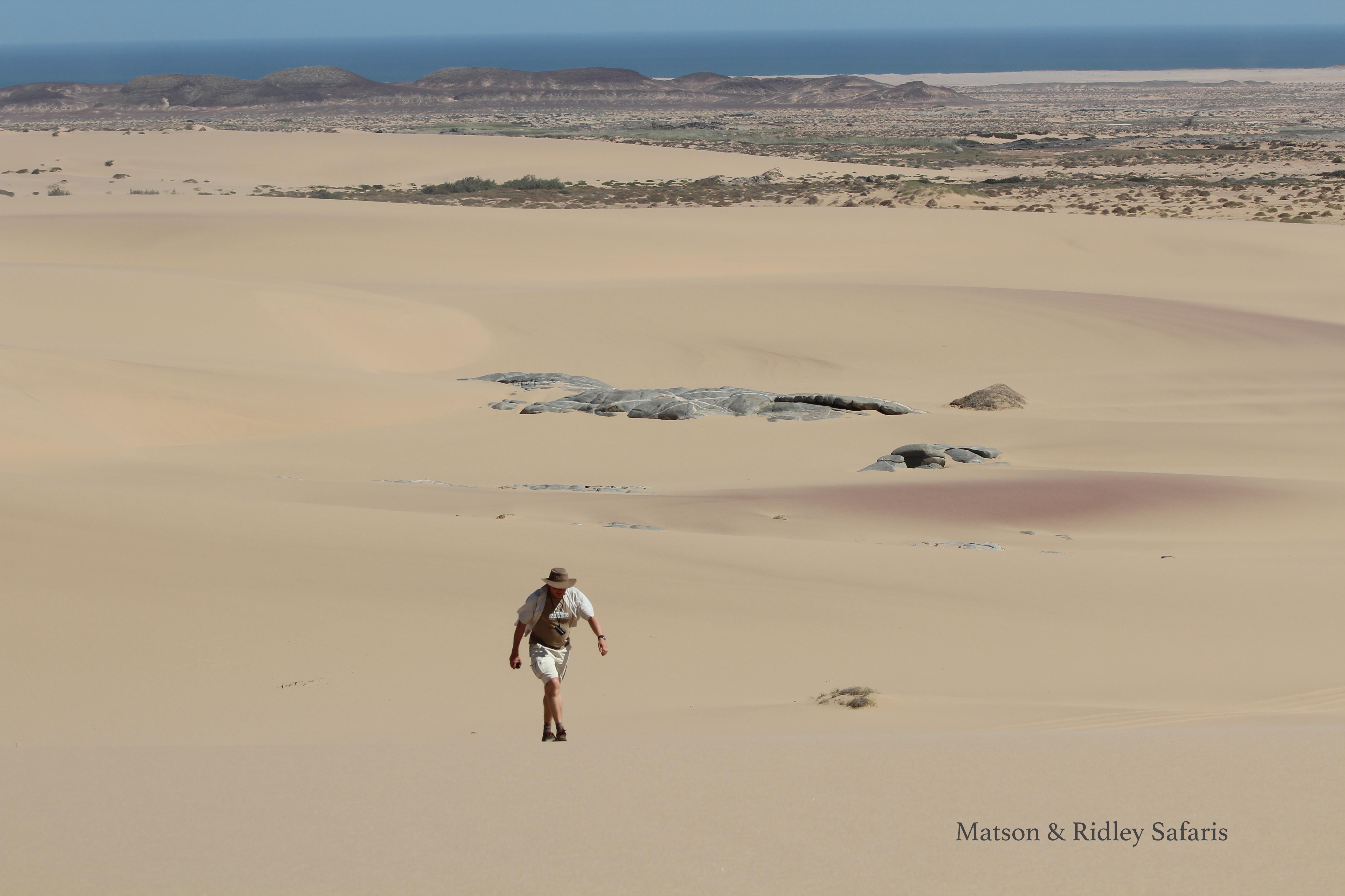 Tristan in dunes